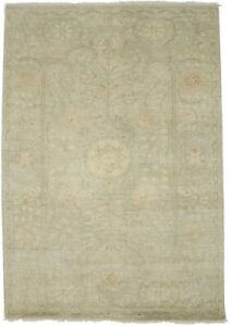 Vintage Style Muted Green Floral Transitional 4X6 Oriental Rug Home Decor Carpet