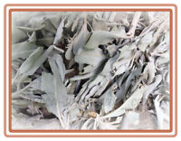 Loose White Sage Organic ritual cleansing healing herb 1 ounce smudging