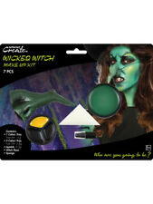 Wicked Witch Halloween Fancy Dress Make Up Face Paint Kit Adults Ladies Spooky