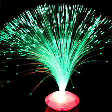 Color Changing LED Fiber Optic Night Light Lamp Stand Home Decor Colorful WB