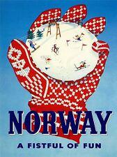 TRAVEL TOURISM WINTER SPORT SKI GLOVE NORWAY ART POSTER PRINT LV4323