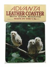 Baby Owls on Branch Single Leather Photo Coaster Animal Breed Gift, AB-2SC