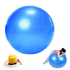 55cm Exercise Ball Pilates Balance Yoga Gym Fitness Aerobic Abdominal Strength