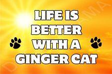 Life Is Better With A Ginger Cat Fridge Magnet Gift/Present Kitten