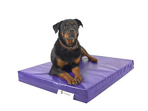 Chew Resistant Heavy Duty Tough Waterproof Purple Dog Bed Vandal