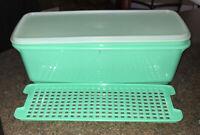 Vtg Tupperware Long Container Bread Celery Keeper Refrigerator Crisper Green 3 p