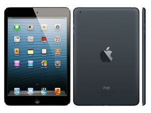 Apple iPad Mini 16gb wifi no SIM nero black GRADO A usato con garanzia