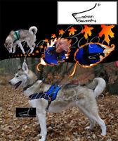 FN Dog Harness, XS S M L XL padded extra Big large medium small heavy duty husky