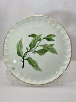 1 WS George B8760 Dinner Plate Fine China Bolero Green Leaves White Flowers