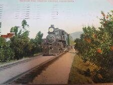 STEAM ENGINE TRAIN ORANGE GROVES CA 1910 POSTCARD