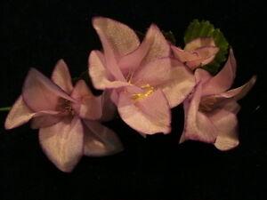 "Vintage Millinery Flower Pink Lilac Silk 1 3/4"" for Hat Wedding + Hair Y218"