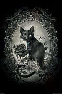 Alchemy Paracelsus Black Cat Gothic Goth Room Decor Skull Horror Witchy