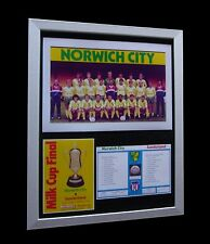 NORWICH CITY 1985 MILK/ LEAGUE CUP FINAL LTD Nod FRAMED+EXPRESS GLOBAL SHIPPING