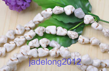 Wholesale 40pcs White Turquoise Freeform Nugget Loose Beads