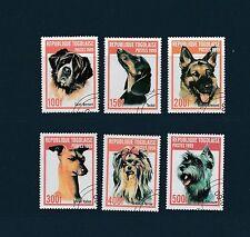 Togo   faune  chiens    de 1999    num: 1688N/88T   oblitéré