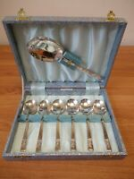 Vintage Box of Angora EPNS Set of Dessert Spoons and Serving Spoon [313]