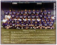 NFL 1973 Minnesota Vikings Color Team Photo Picture  Color 8 X 10 Photo Picture