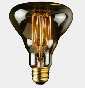 Globe Designer LABO Clear Glass R30 Decorative Bulb 40 watts Dimmable E26 84654