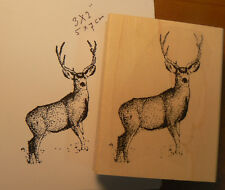"P6 Deer rubber stamp 3x2"" WM NEW"