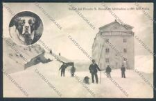Aosta La Thuile Piccolo San Bernardo Nevicata Cane Dog cartolina ZQ4924
