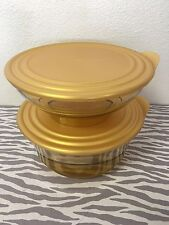 Tupperware Acrylic Preludio Serving Bowls Set Of 2 Sheer w/ Gold 10, 6 cups New