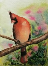 Hand Painted Original Watercolor ACEO NORTHERN CARDINAL Bird  Signed by JV
