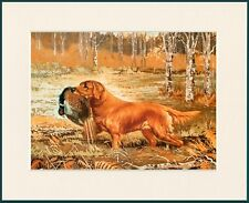 GOLDEN RETRIEVER AT WORK LOVELY DOG PRINT MOUNTED READY TO FRAME