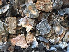 1lb Wholesale Zeusite Crystal Clusters Bulk Druzy Specimens Chalcedony