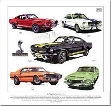 Mustang Shelby Lámina Artística - GT350 Coupé Fastback GT350-H GT500KR Ilustrado