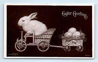 1907 Easter Greetings Rotograph Co. Postcard Bunny Driving Rabbit Cart Eggs