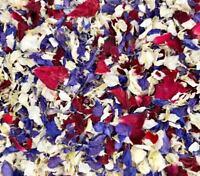 RED WHITE BLUE Delphinium Petals Biodegradable Wedding Confetti Royal Wedding