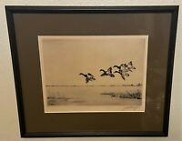 Original Signed JD Knap Pencil Signed Sporting Art Ducks Etching - Redheads