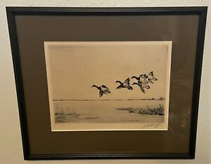 Original Signed JD KNAP Pencil Signed Sporting Art Ducks Etching - Redheads