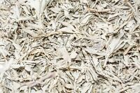 California White Sage Smudge Loose Cluster Incense Bulk (2 lbs) #JC-1