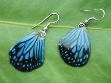 REAL Monarch Glassy Tiger Butterfly Wings Earring Jewelry 925 Sterling Hook