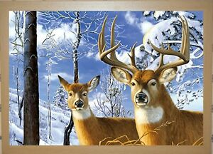 OAK FRAMED PAIR OF STAGS - 3D ANIMAL PICTURE 465mm X 365mm