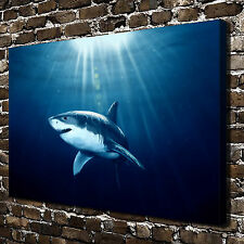 Ocean Shark Paintings HD Print on Canvas Home Decor Wall Art Pictures
