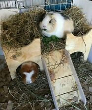(MY ORIGINAL DESIGN NOT A COPY)  TWO STOREY GUINEA PIG CASTLE /SHELTER