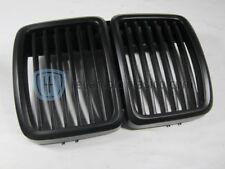 Riñones negros BMW E30