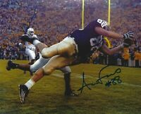 Anthony Fasano Signed Notre Dame Football 8x10 Photo Dolphins Picture Autograph