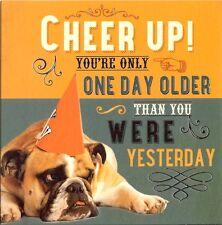 Carino & BUFFA cartolina di Compleanno con scontroso dall'aspetto Bulldog per un amante dei cani (maschio?)