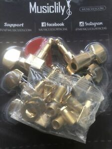 OE 2-Pin Locater Tuners for Fender Strat & Tele 6x In Line 15:1 (Schaller) Gold