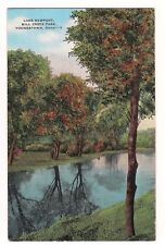 LAKE NEWPORT Mill Creek Park, Start of Fall YOUNGSTOWN OHIO Postcard OH 1949