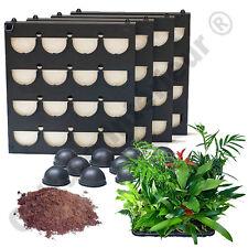 Pack 4 Kits Mur Végétal d'intérieur Flowall Noir 42x40cm avec 64 plantes