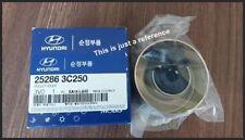 OEM GENUINE Belt Idler Pulley  for Hyundai Genesis  Entourage [07~16] 252863C250