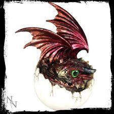 Nemesis Now Dragon Hatchling called Goald