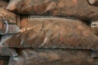 $15.00 worth of US Copper Pennies 1909-1982.   1500 Pennies. (10 Pounds)