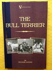 DOGS BULL TERRIERS HAYNES PIT GAME STAFFORDSHIRE BREEDING TERRIER FIGHTING