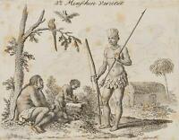 """CHODOWIECKI (1726-1801). Die amerikanische """"Menschen-Varietät""""; Druckgraphik 1"""
