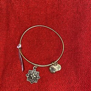 NWT Alex and Ani HEALING LOVE Rafaelian Gold Charm Bangle Bracelet